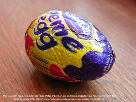 eggs 13