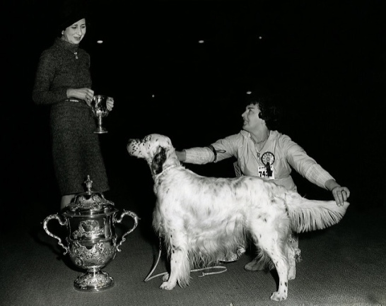 Crufts Reserve Best in Show 1961 & 1963 - The Kennel Club via flickr