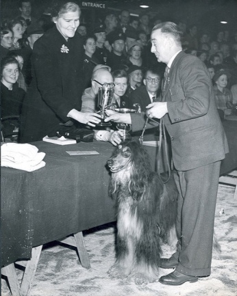 Crufts Reserve Best in Show 1953 - The Kennel Club via flickr
